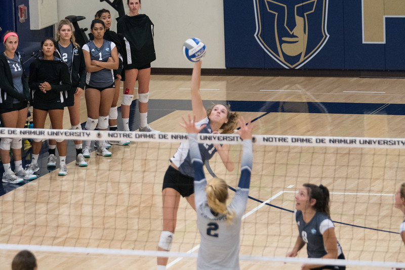 HPU Volleyball-92216.jpg