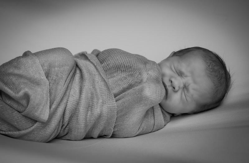 Schetler Family Newborn B&W