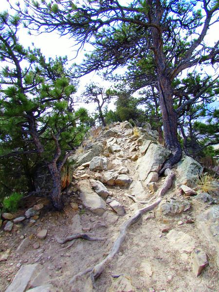 Local Hikes (933).JPG