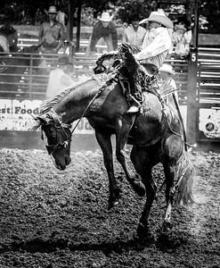CVRA Rodeo 2016