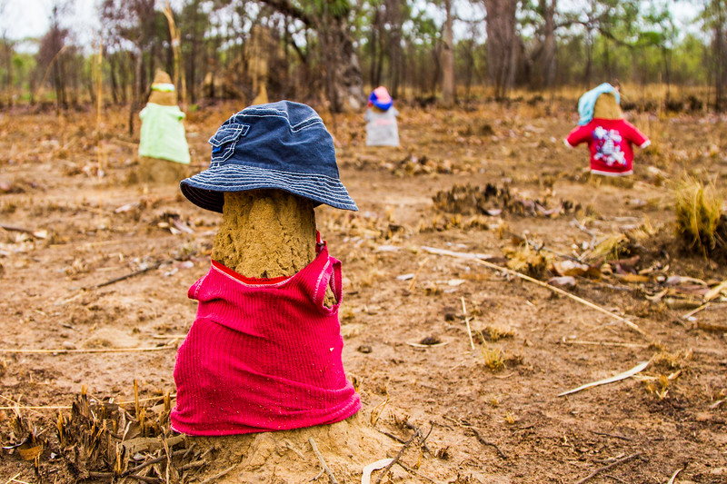 I was filming in Western Australia... driving hundreds of miles down endless roads as I searched for locations to shoot. Every now and then, in the middle of nowhere I would come across little groups of termite mound people... I don't know why they are dressed, or who dresses them, but they are certainly a little creepy. #BBCEarth #Australia #Filming #TermiteMound #Desert #Funny #EarthOnLocation