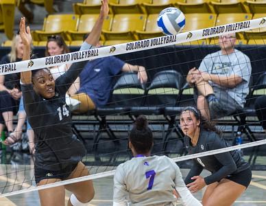 NCAA Women's Volleyball - CU vs Abilene Christian University - 20170903