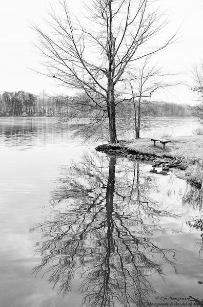 Reidsville_Lake_1-1-2011-559_HDR.jpg