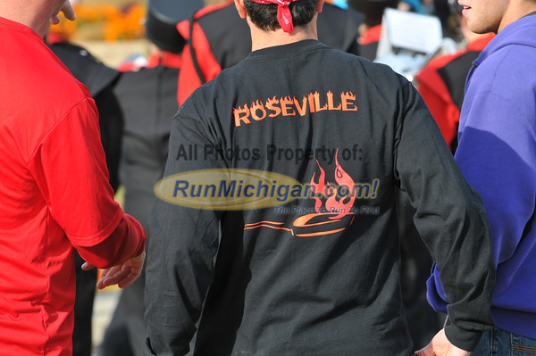 1 Mile, 4K and 10K (tr) - 2012 Big Bird Run