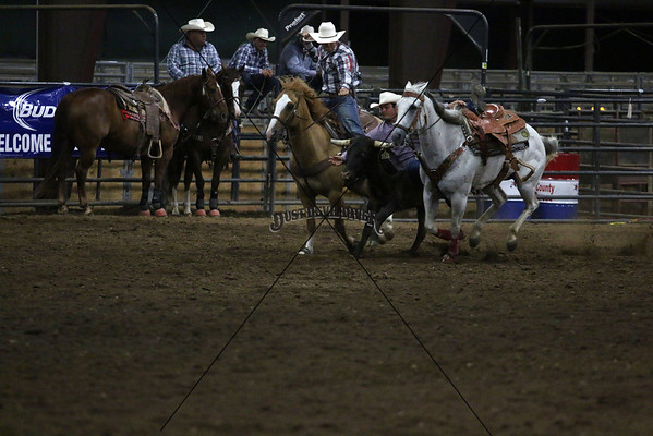 Thursday Slack Steer Wrestling
