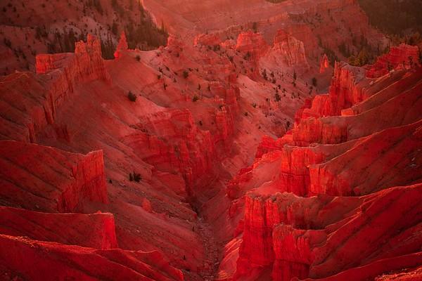 Utah 2000