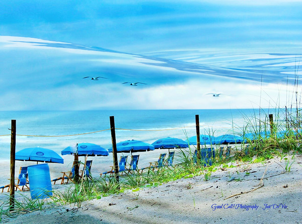 ART FOR YOUR WALLS -   prints, canvases & specialty products for sale