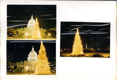 12-12-1989 Capitol Christmas Tree