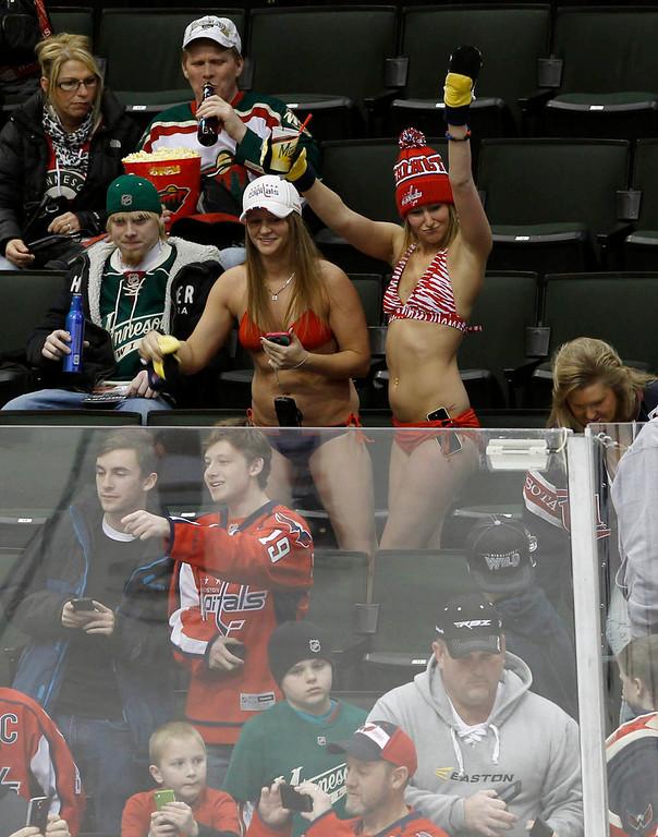 . Two fans in bikinis cheer the Washington Capitals prior to an NHL hockey game against the Minnesota Wild in St. Paul, Minn., Saturday, Jan. 4, 2014.   (AP Photo/Ann Heisenfelt)