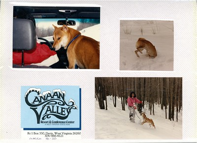 3-18 to 20-1988 Canaan Valley w/Kam's