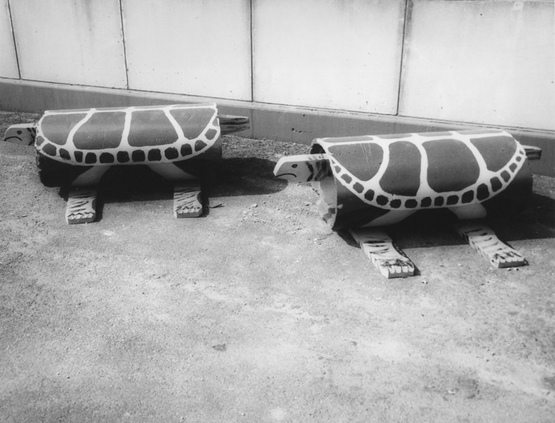 Mayor Biertuempfel designed and helped build these playground turtles out of recycled sewer pipe in order to save the town money. These were among other playground fixtures were featured in Popular Mechanics Magazine. We understand that DPW legend Al Koenig had a big part in the design and fabrication of these turtles.