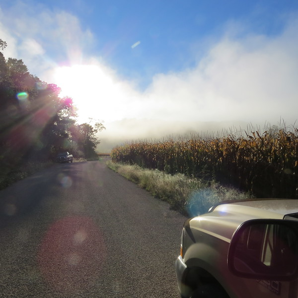 cornfield and road in fog.JPG