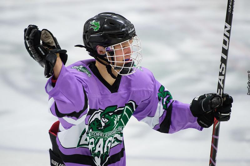 LDC Boys Hockey Fights Cancer Night vs Delano Tigers
