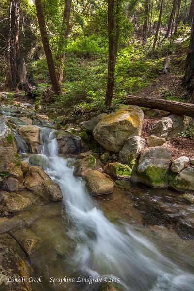 _DSC3703Limekiln Creek.jpg