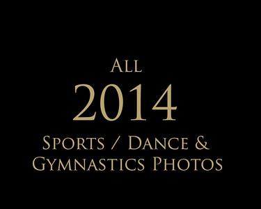 2014 Sports