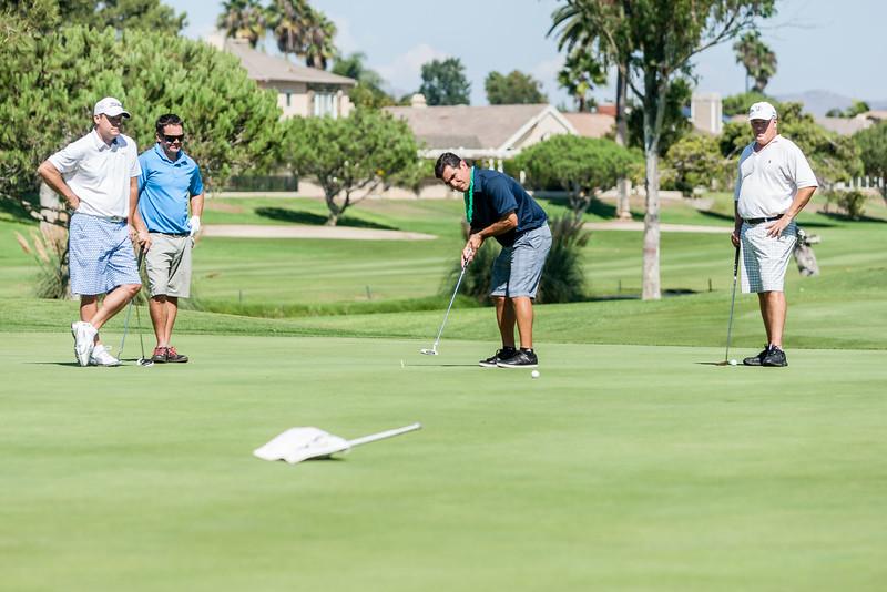 Golf248.jpg