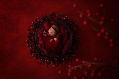 Natalie Kelk Newborn shoot