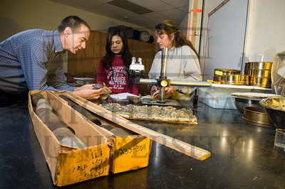 16838 Environmental Sciences Students Jami Moore & Ritu Ghose Geology Research 12-16-15