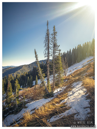 Wyoming 2017