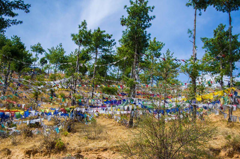 031313_TL_Bhutan_2013_092.jpg
