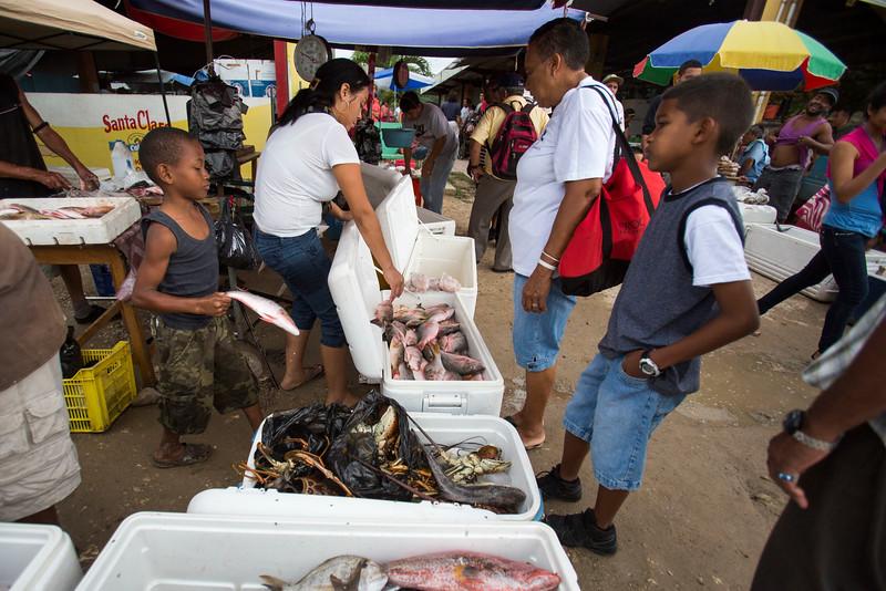 Pratt_Belize_42.jpg