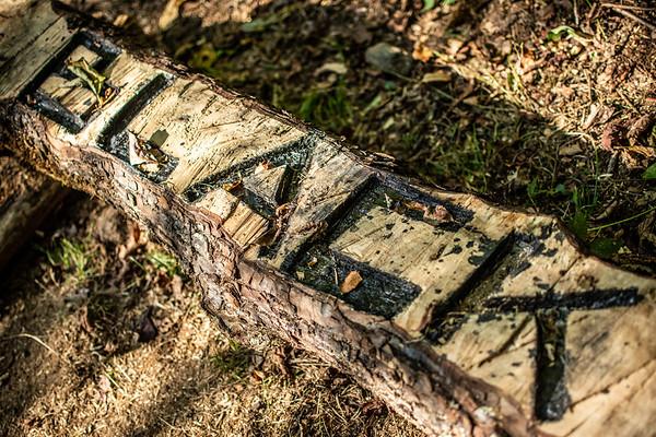 2019 Nature Trails - Club Gap to Black Mtn.
