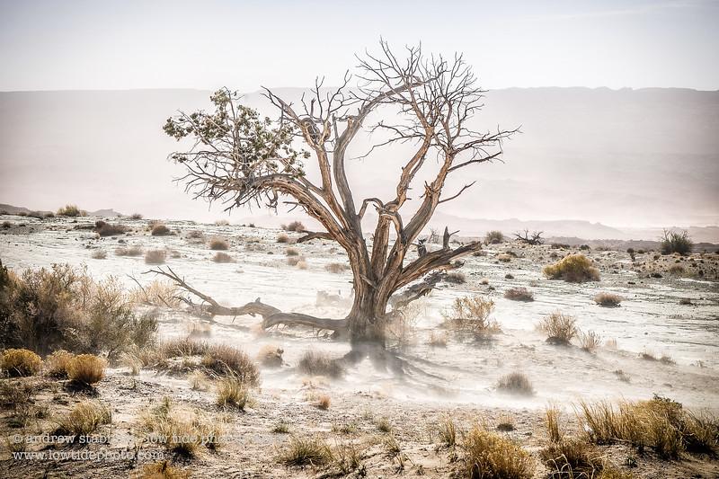 travel | landscape | nature