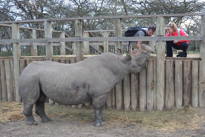 East Africa Safari 37.jpg