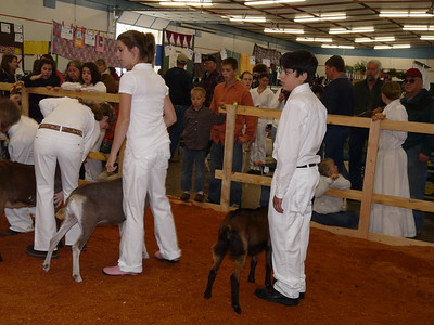 2009 Youth Fair
