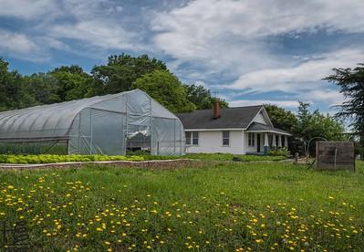 Greenville - Farm Tours
