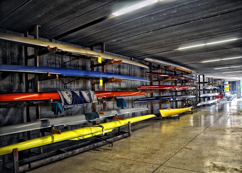 Rowing  .jpg