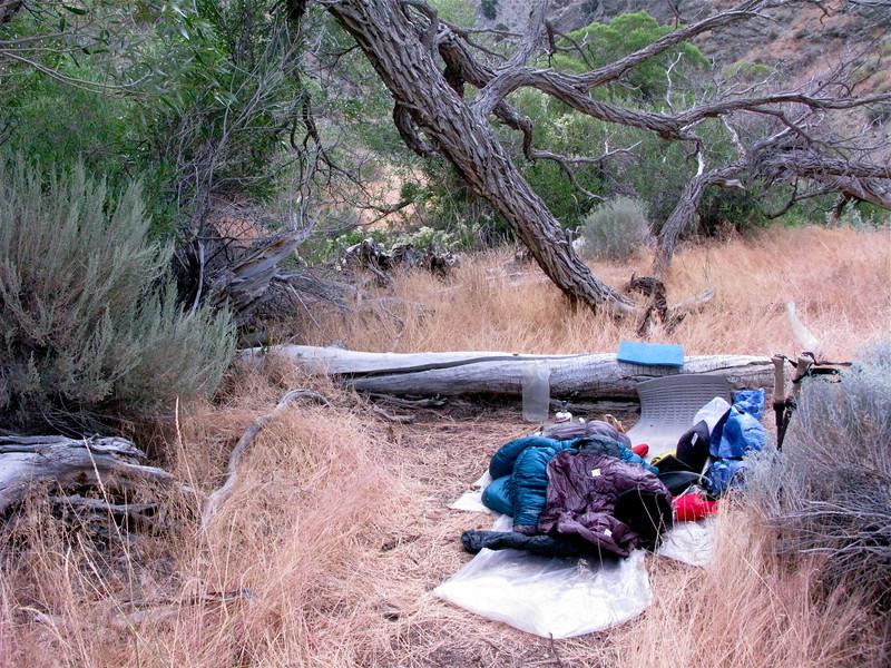 Campsite above falls