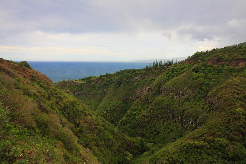 Maui 07 011.JPG