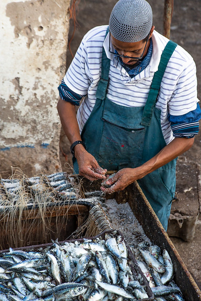 Essaouira fisherman.jpg