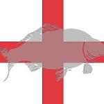 WCC-flag-England-260x140.jpg