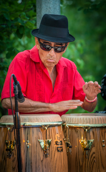 Chico Perez-Salute to the Music of Bob Dylan 2014-Wolfe Park, St. Louis Park