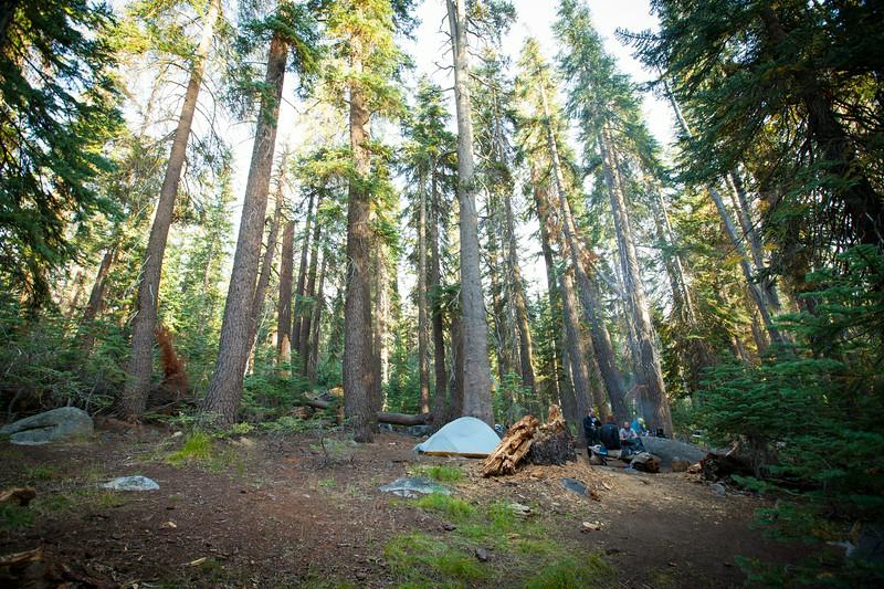 20140825_sequoia_0269.jpg