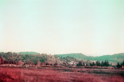 Cold Buttes on Film