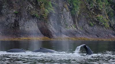 Alaska-Southeast