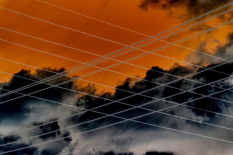Crossed Wires, Cupertino, California, 2010