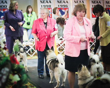 2012-05-12 Saturday May 12th NEAA Best of Breed
