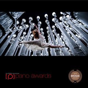 Epson International Pano Bronze Awards Elliot McGucken Fine Art