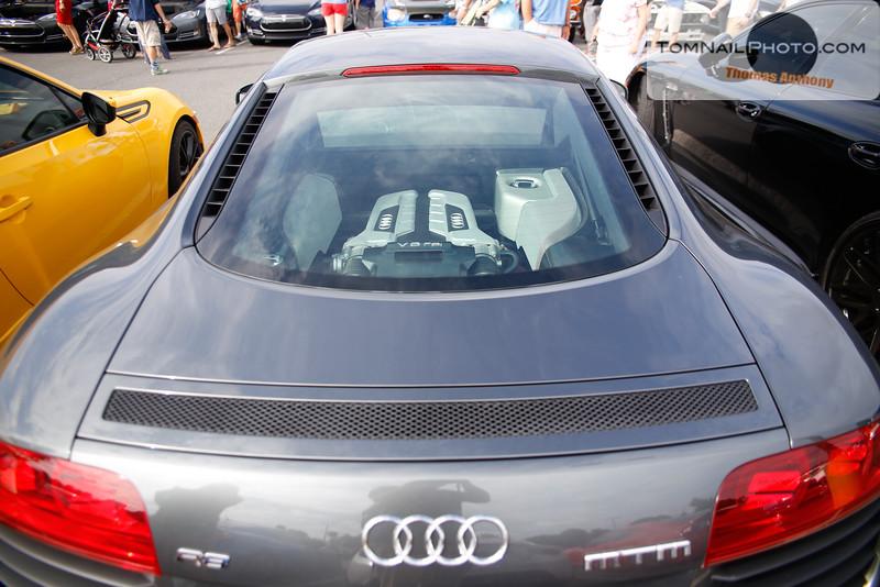 cars and dog-1011.jpg