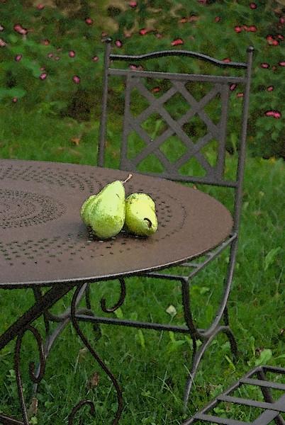 beaune watercolor pears.jpg