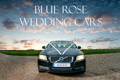 Blue Rose Wedding Cars