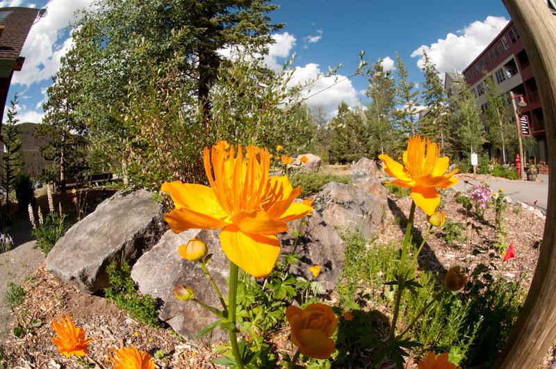 20100718_Colorado_Vacation_2010_0132