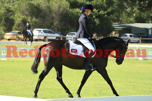 2014 02 01 Acres Dressage Series Grassed Arenas 08-00 till 09-00