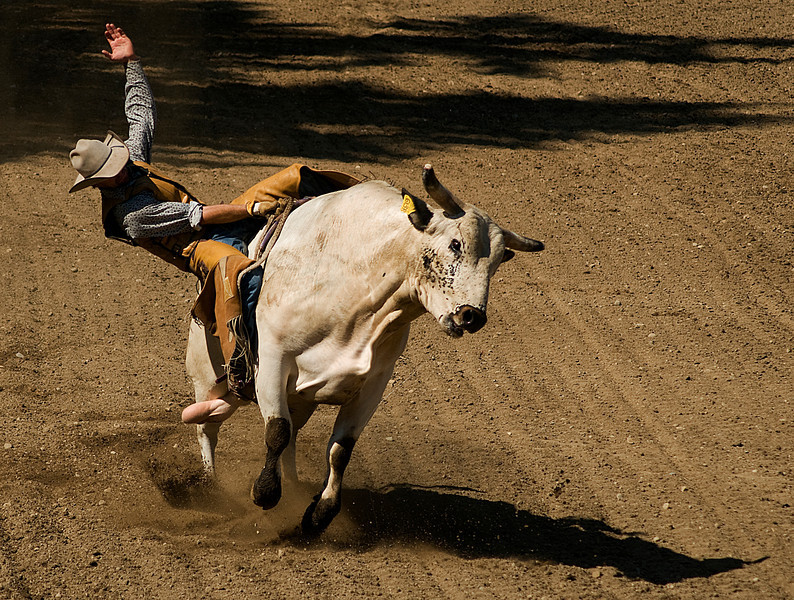 COOMBS RODEO-2009-3716A.jpg