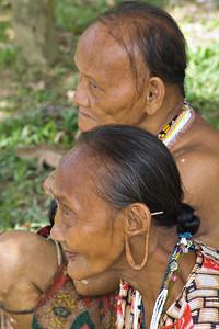 Im Dschungel: Mulu 2004