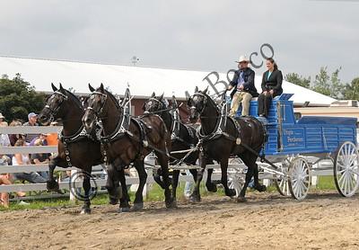 Goshen Fair 2008